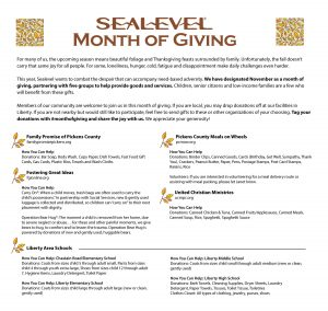 Sealevel Month of Giving